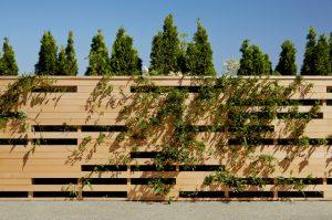 حصار چوبی